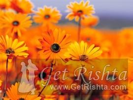 Girl Rishta proposal for marriage in  Rajput or Rajpoot