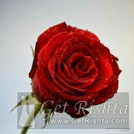 girl rishta marriage islamabad